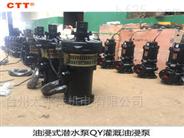 农用灌溉高扬程水泵喷泉泵 三相油浸泵
