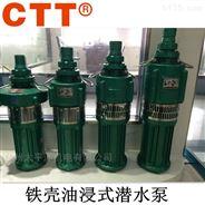 QY油浸式潜水泵 铁壳充油式电泵