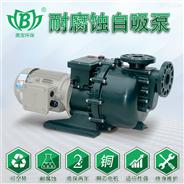 美寶PVDF耐酸堿污水自吸泵